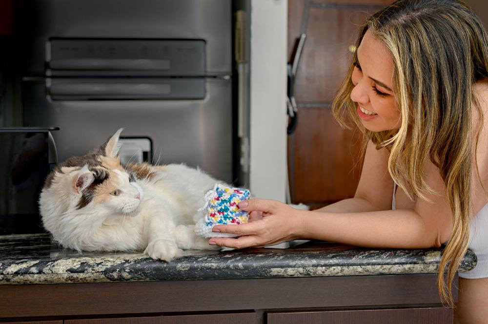 Foto mostra uma mulher loira sorrindo e mostrando um brinquedo para um gato branco
