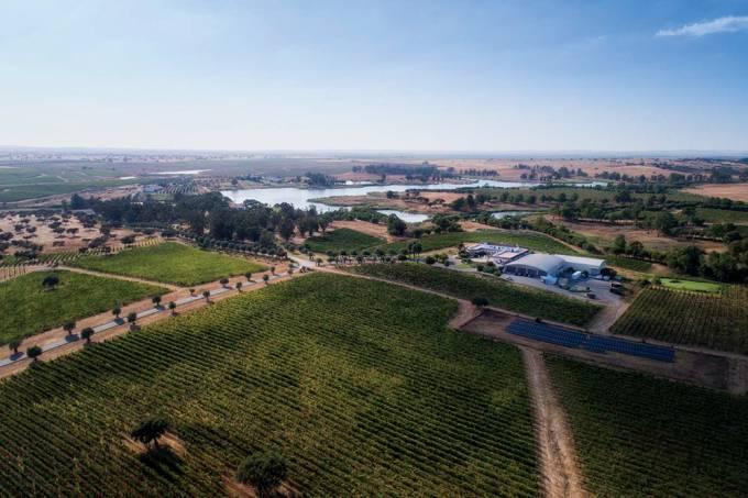 Programa de Sustentabilidade de Vinhos do Alentejo (PSVA)