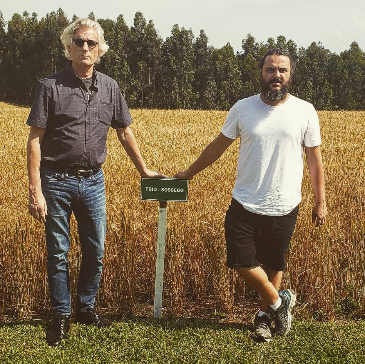 Do lado esquerdo, o padeiro norte- americano Michel Suas e com o também padeiro Eduardo Freire Feliz em frente a um campo de trigo