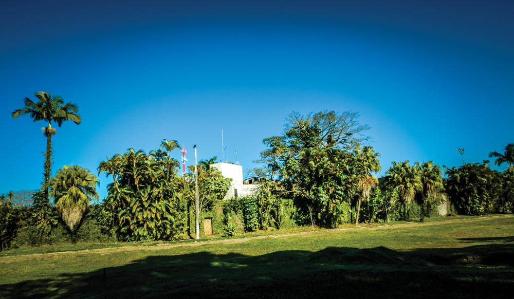 vista externa da casa de pelé tirada de longe, com bastante grama no primeiro plano e a fachada da casa com diversas árvores em volta e na frente