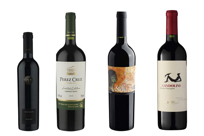 vinhos vale do maipo