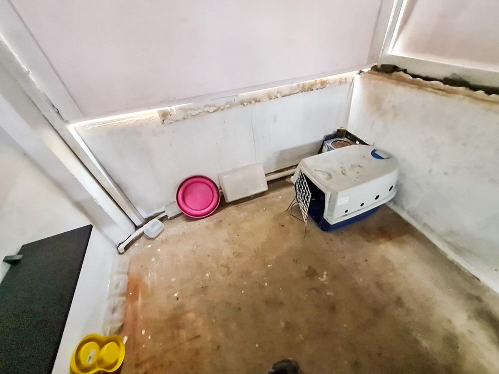 espaço interno do gatil da Loremi, visto de cima. há uma gaiola vazia no canto e alguns poucos potes virados e encostados nas paredes