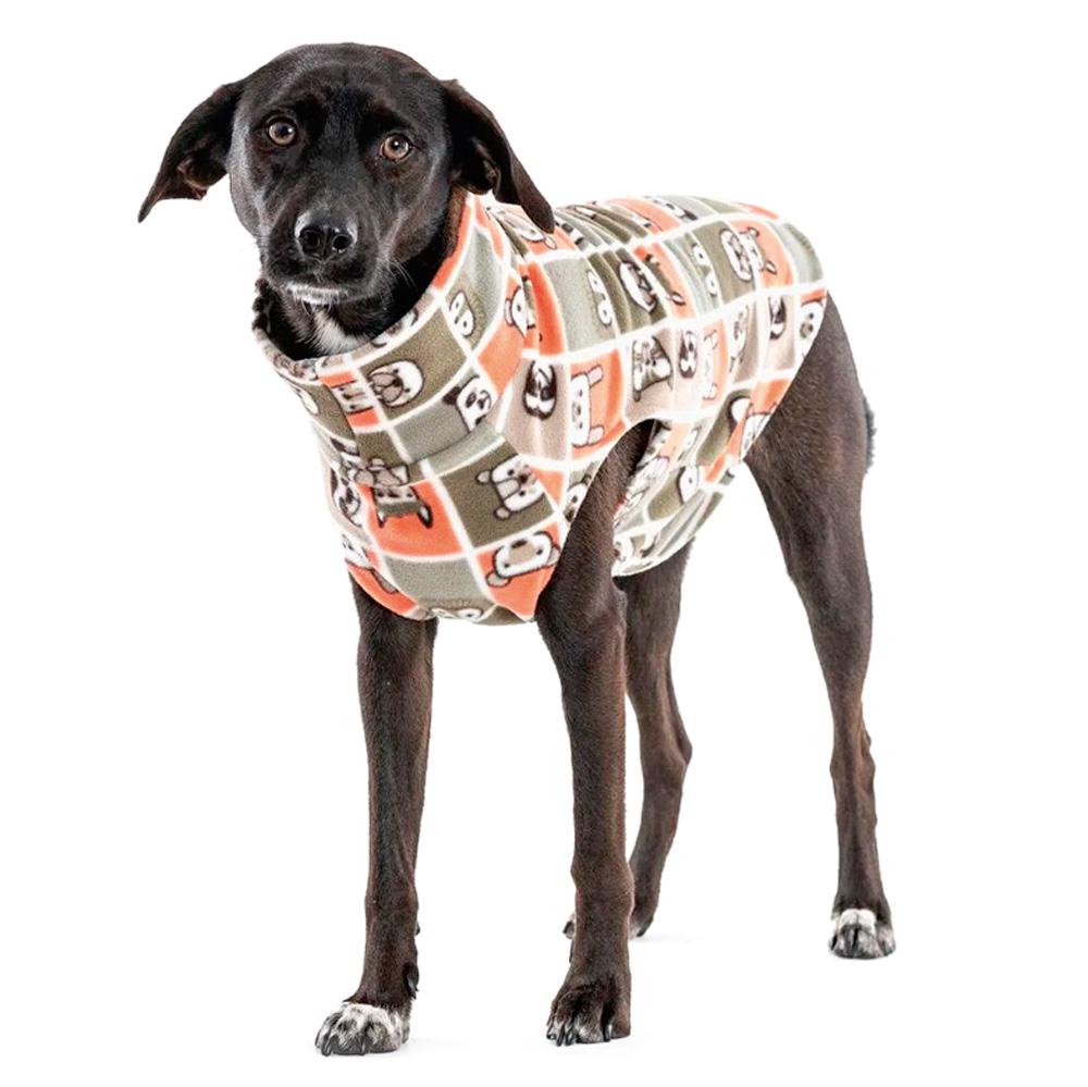 cachorro preto com roupa colorida
