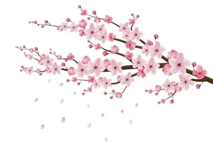 verdadeira-beleza-e-felicidade-visão-japonesa-lilian-sanpei-a-tal-felicidade-destaque