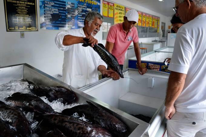 A imagem mostra peixe sendo comercializado