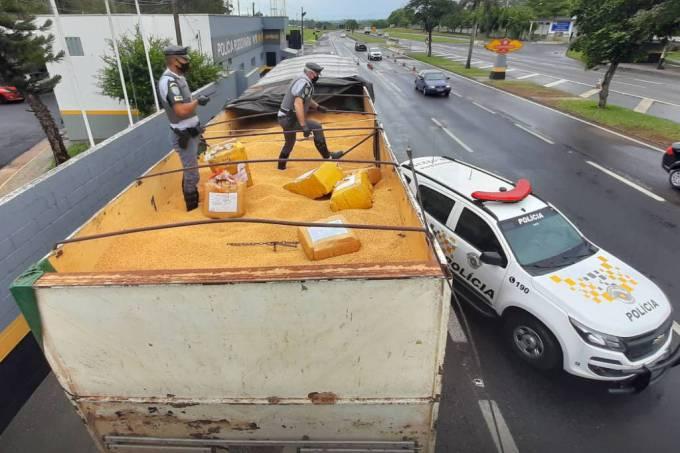Policiais encontram as 12 toneladas de maconha escondidas em carga de soja, em Presidente Prudente, interior de SP (Divulgação)