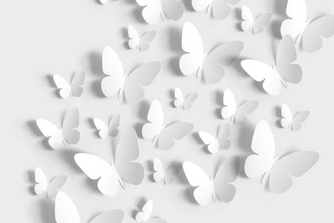 borboletas-destaque-a-tal-felicidade-lucidez-e-esperanca-cancer-de-mama-doencas-graves.jpg